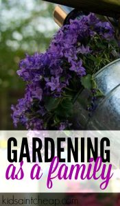 Gardening as a family is such a fun and frugal activity. We spend only $50 a year on it and have a ton of fun.