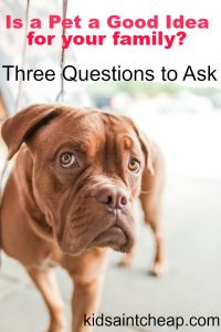 Is a pet a good idea for your family? Here are some questions to ask before venturing into pet ownership.
